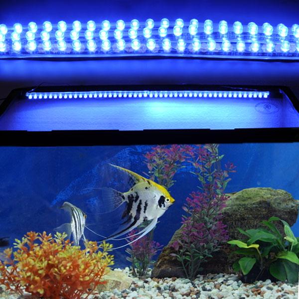 3x mondlicht aquarium blau 24 led licht beleuchtete. Black Bedroom Furniture Sets. Home Design Ideas